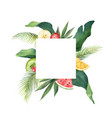 watercolor frame green tropical leaves vector image vector image