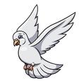 Flying white dove 2 vector image