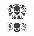 skull and bones logos vector image