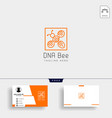 bee dna science creative logo template with vector image