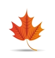 fall season design vector image