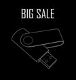 flash memory stick sale vector image