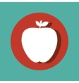 fresh apple fruit isolated icon vector image