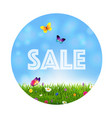 grass and flowers sale ball vector image