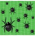 spiders on a green background vector image vector image