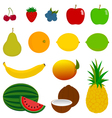 14 Fresh Fruit Icons vector image vector image