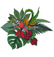composition of hand drawn tropical flowers vector image vector image