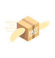 fast delivery service flat parcel with wings vector image vector image