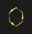 gold frame design vector image