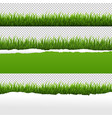 green grass and ripped paper transparent vector image vector image