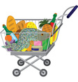 Grocery store shopping cart with food items and vector image vector image