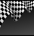 realistic detailed 3d checkered racing flag vector image vector image