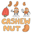 set of cashew nut vector image