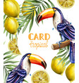 toucan and lemon tropic card watercolor vector image vector image