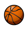 basketball ball isolated on white background vector image vector image