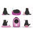 black cat mascot animal - cute fat kitten vector image vector image