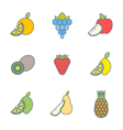 colored outline various fruits icons vector image