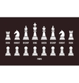 complete set chess pieces vector image