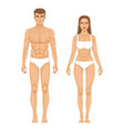 model of sporty man and woman standing front view vector image vector image