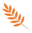 rowan autumn leaf icon flat style vector image