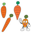 set of carrot vector image vector image
