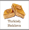 turkish dessert - baklava with walnut vector image