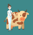veterinarian cow livestock caring woman at work vector image vector image