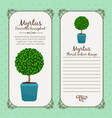 vintage label with myrtus plant vector image vector image
