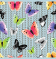 watercolor monochrome and multicolored butterflies vector image vector image