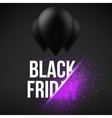 Black Friday Sale Air Balloon Template vector image vector image