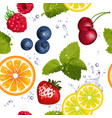 Bright Seamless Fruit Pattern vector image