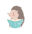 cute hedgehog sitting and reading book adorable vector image vector image