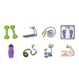 fitness and attributes icons in set collection for vector image