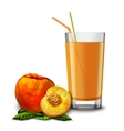 Peach juice glass vector image