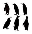 penguien silhouette set vector image vector image