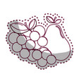 sticker silhouette grape and pear fruits icon vector image vector image