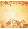 a beautiful autumn vector image vector image