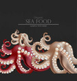 fresh octopus realistic 3d detailed vector image vector image