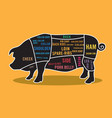 pork cuts map infographic vector image vector image