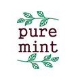 pure mint label black outline doodle typography vector image