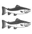Set of trout icons Design elements for fishing vector image
