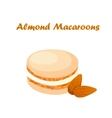 tasty macaroon cookie vector image vector image