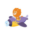 cute lion flying an airplane funny pilot flying vector image vector image