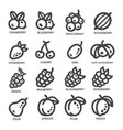 fruit thin line icon vector image vector image