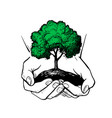 hands holding tree ecologic safe sign concept vector image vector image