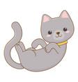 isolated cat cartoon design