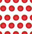 Slice tomato seamless pattern background from vector image vector image