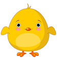 Yellow Chick vector image vector image