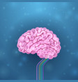 Brain and its functions vector image