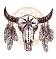 Buffalo Skull With Feathers And Dreamcatcher vector image vector image
